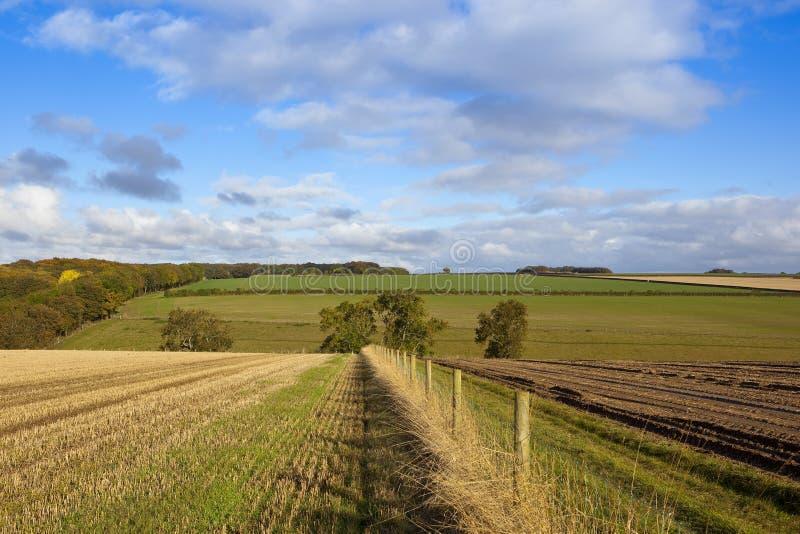 Landbouwplatteland stock afbeelding