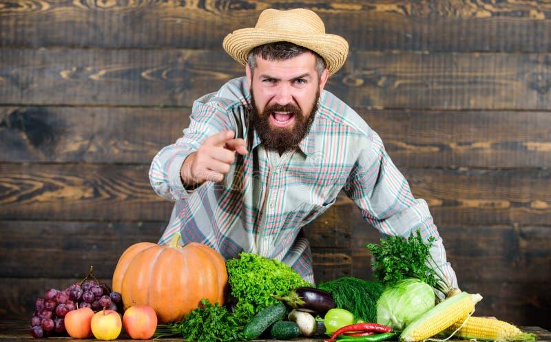 landbouwproducten seizoengebonden vitaminevoedsel Nuttige fruit en groente gebaarde rijpe landbouwer Oogstfestival Organisch en stock afbeelding