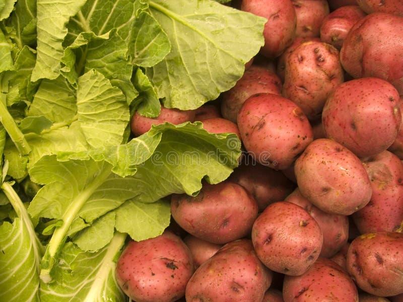 Landbouwproducten van III stock foto