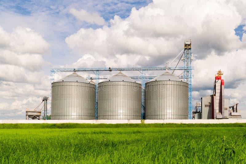 Landbouwsilo, de aanplantingen van de voorgrondzonnebloem - de Bouwbuitenkant, Opslag en het drogen van korrels, tarwe, graan, so royalty-vrije stock afbeeldingen