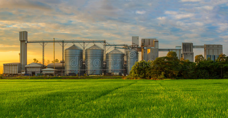 Landbouwsilo's - de Bouwbuitenkant, Opslag en het drogen van korrels, tarwe, graan, soja, zonnebloem tegen de blauwe hemel stock afbeelding