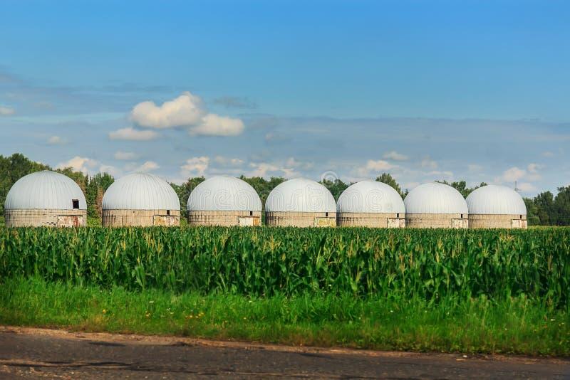 Landbouwsilo's - de Bouwbuitenkant, Opslag en het drogen van korrels, tarwe, graan tegen de blauwe hemel met padievelden stock foto
