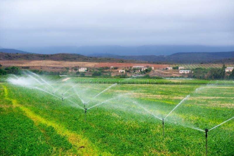Landbouwsproeiers die op een gebied water geven, stock afbeeldingen