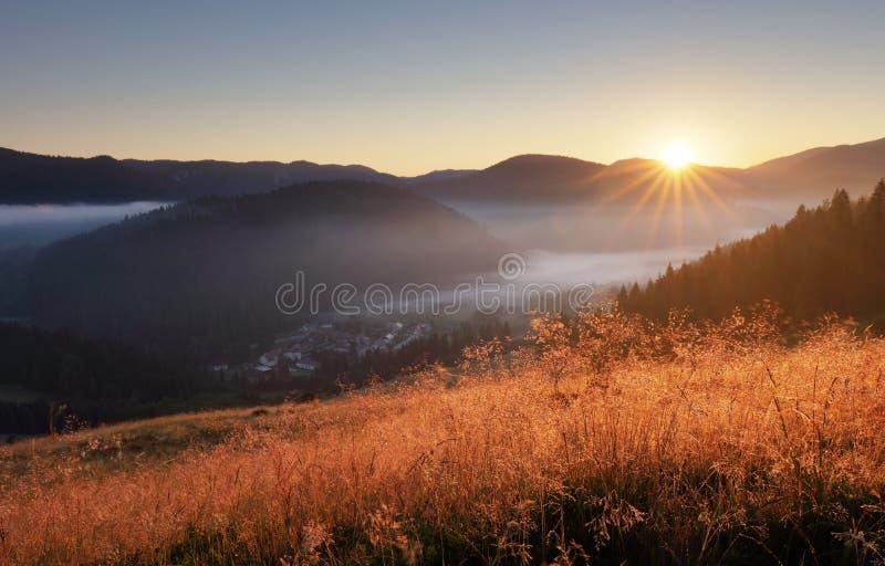 Landcape с солнцем, лугом, лесом и горой стоковые изображения
