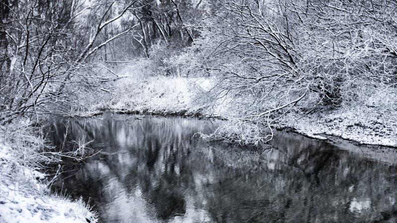 Landcape 4 do inverno imagem de stock