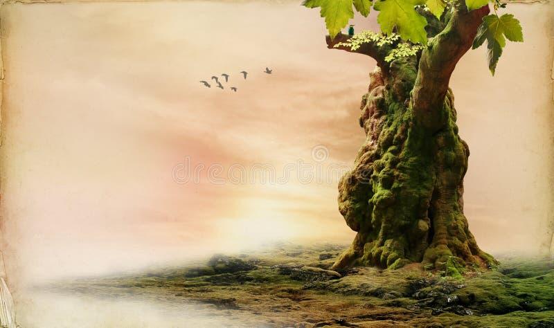 Landcape romantique image libre de droits