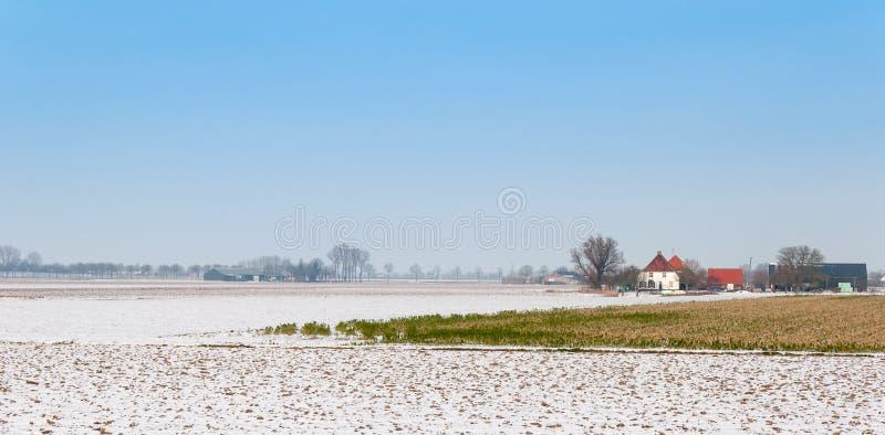 Landelijk de winterlandschap in Nederland stock afbeeldingen