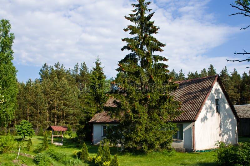 Landelijk huis met groene bomen in Polen stock fotografie