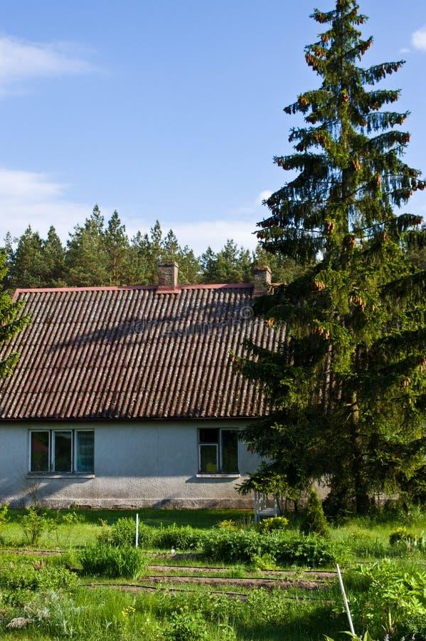 Landelijk huis met groene bomen in Polen royalty-vrije stock afbeeldingen