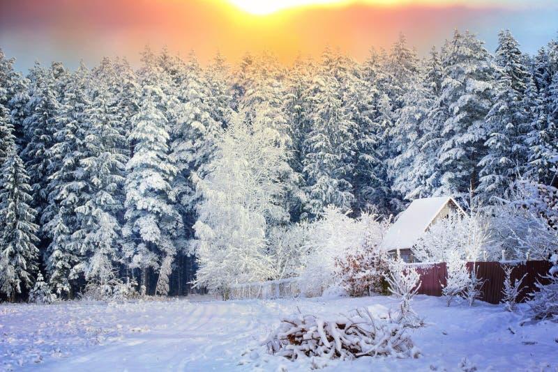 Landelijk huis op de rand van een bos in de sneeuw stock fotografie