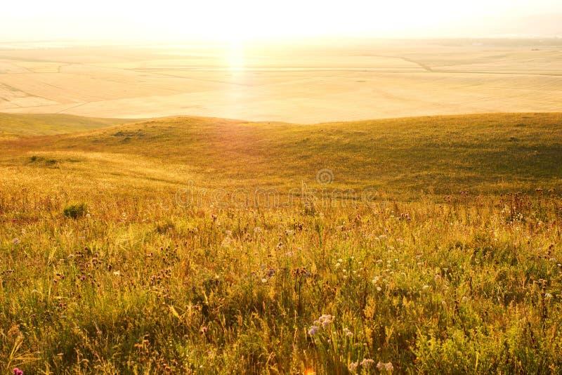 Landelijk landschap bij zonsondergang royalty-vrije stock afbeelding