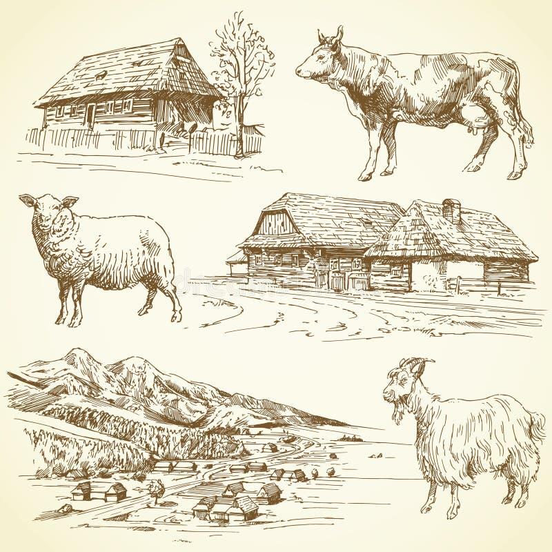 Landelijk landschap, dorp, landbouwbedrijfdieren royalty-vrije illustratie