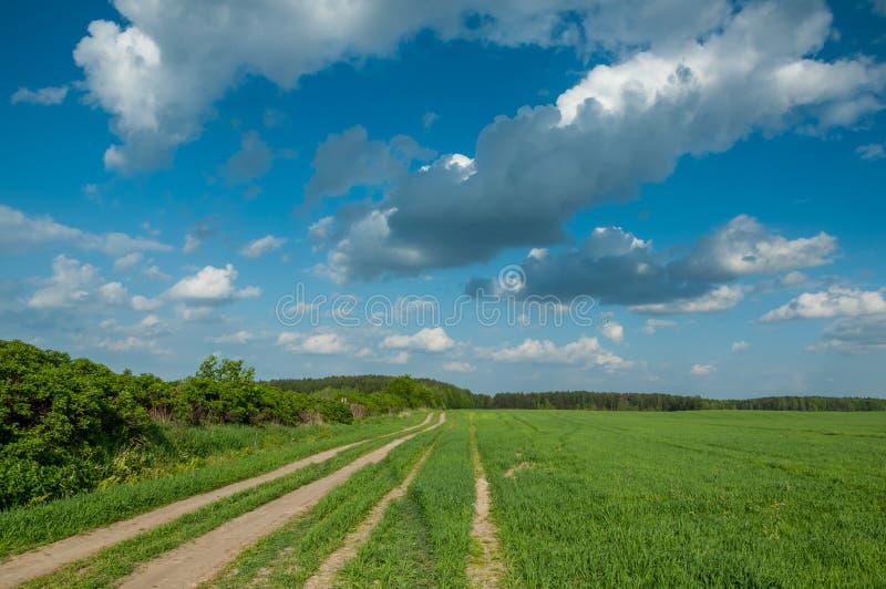 Landelijk landschap gebieds zandige weg stock afbeelding