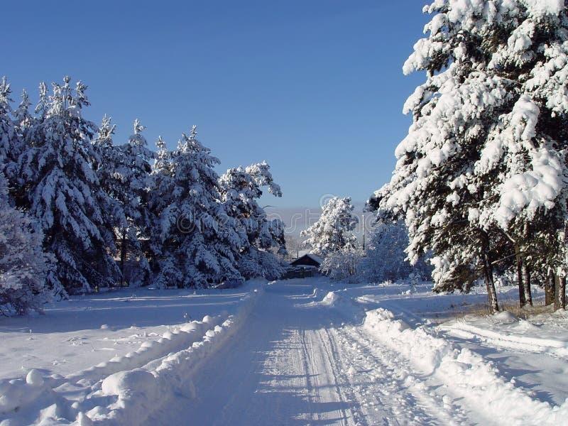 Landelijk landschap in het noorden van Rusland stock afbeelding