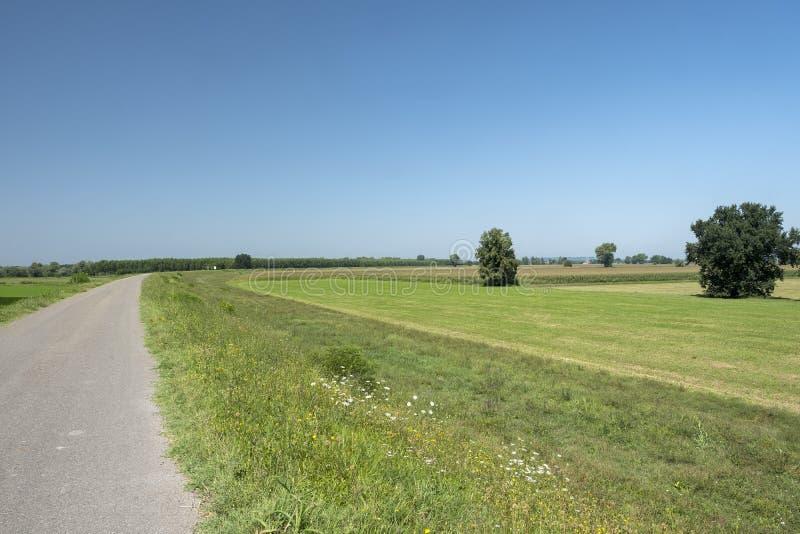 Download Landelijk Landschap Langs Het Po Fietspad Stock Afbeelding - Afbeelding bestaande uit cyclus, landbouw: 114225061