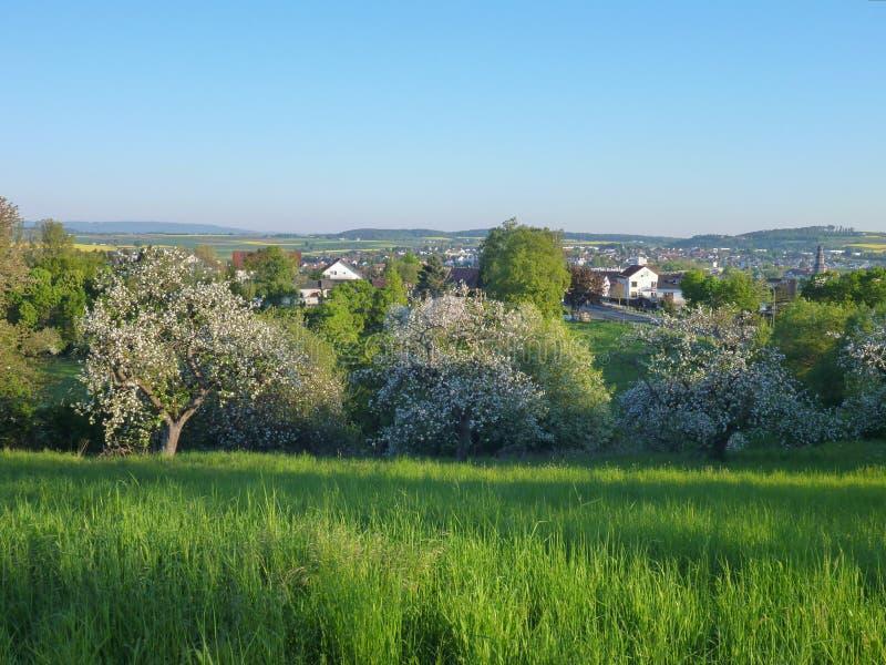 Landelijk landschap met gebieden en dorp op achtergrond stock foto's