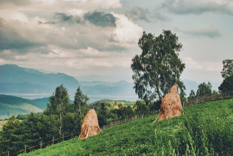 Landelijk landschap met hooibergheuvels stock foto's