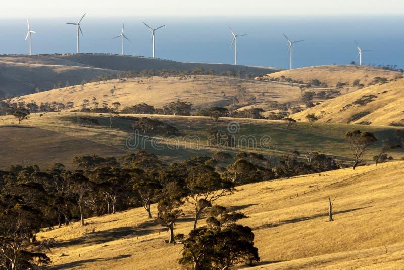 Landelijk landschap met windlandbouwbedrijven dichtbij Grote Oceaanweg, Australië stock afbeelding