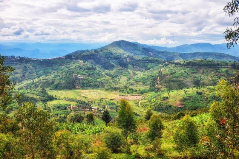 Landelijk Landschap Rwanda royalty-vrije stock fotografie