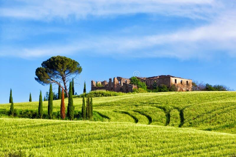 Landelijk landschap in Toscanië stock afbeeldingen