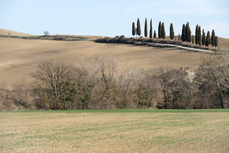 Landelijk landschap in Toscanië royalty-vrije stock foto