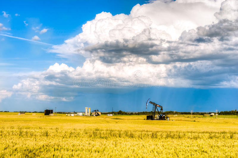 Landelijk landschap van Alberta, Canada royalty-vrije stock fotografie