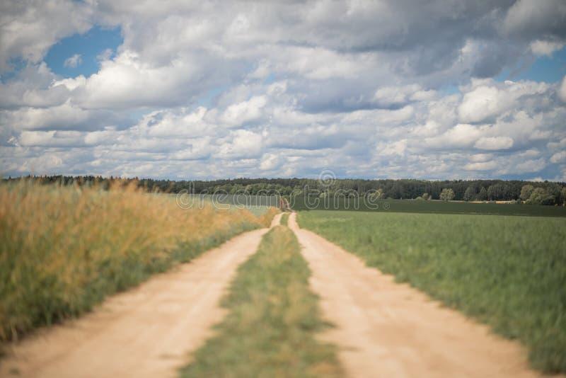 Landelijk landwegspoor in het midden royalty-vrije stock afbeelding