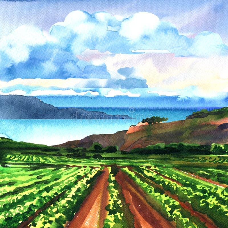 Landelijk panoramisch landschap met wijngaard, oceaan, rotsen, blauwe hemel en wolken, mooie mening, de zomertijd, vakantie en royalty-vrije illustratie