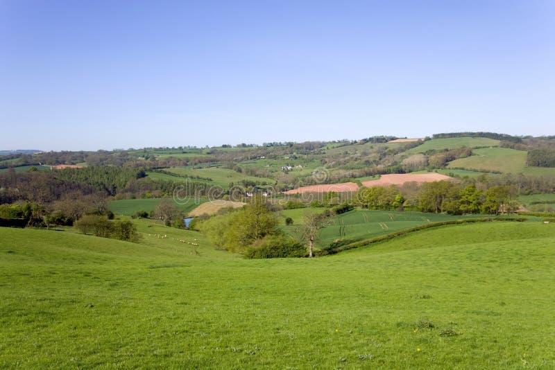 Landelijk Worcestershire-platteland dichtbij Pudford stock fotografie