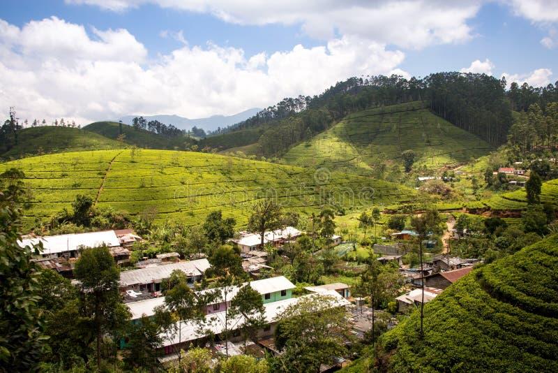 Landelijke bergdorpen onder theeaanplantingen in de hooglanden van Sri Lanka Bekeken van de trein aan Nuwara Eliya royalty-vrije stock foto's