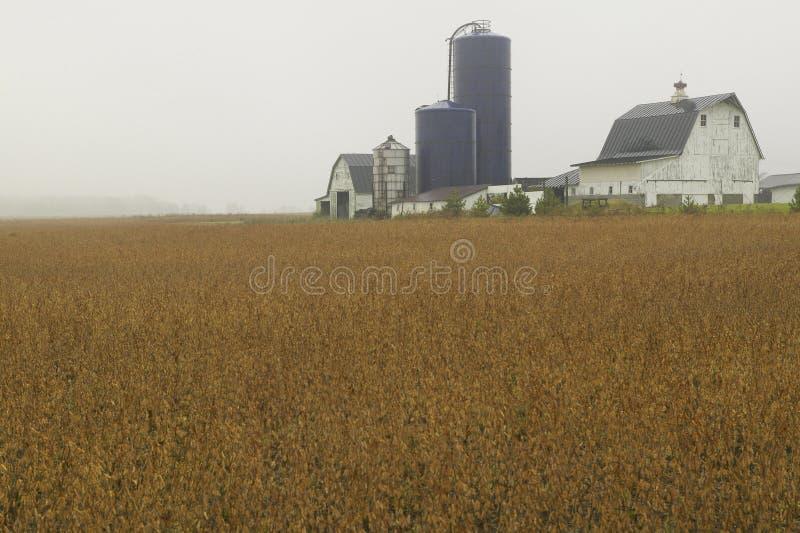 Landelijke boerderij stock afbeeldingen