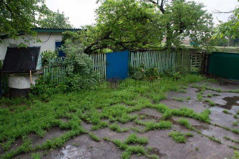Landelijke die yard na de regen met gras wordt overwoekerd en poddles royalty-vrije stock afbeeldingen