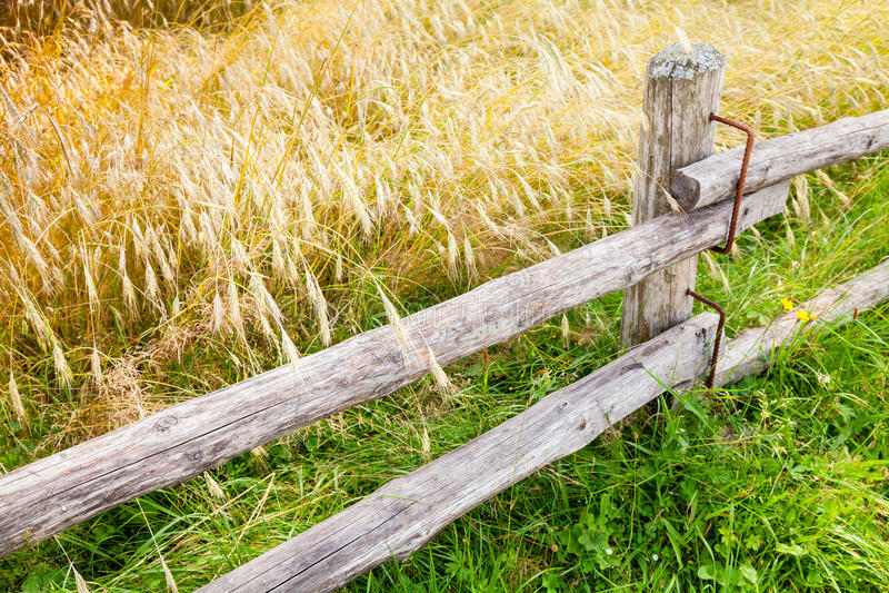 Landelijke houten omheining langs gebied van rogge stock afbeelding