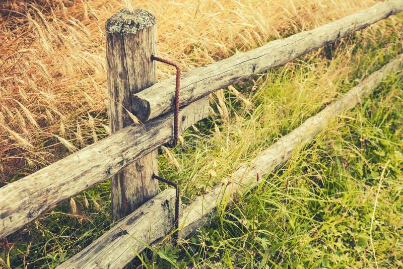 Landelijke houten omheining langs gebied van rogge stock foto