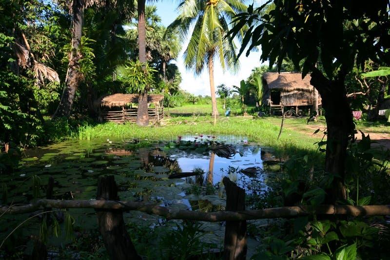 Landelijke huizen in Kambodja. Dichtbij Siem oogst. stock fotografie