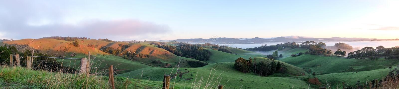 Landelijke landschapspanoroma Warkworth, het Noordeneiland, Nieuw Zeeland NZ stock afbeeldingen