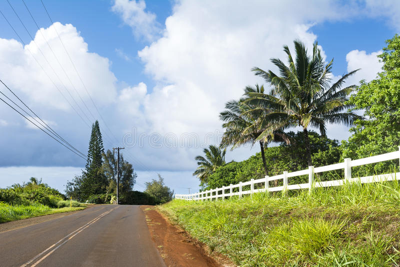 Landelijke landweg stock fotografie