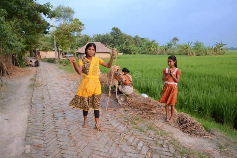 Landelijke levensstijl stock fotografie