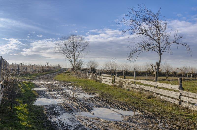 Landelijke modderweg stock afbeeldingen