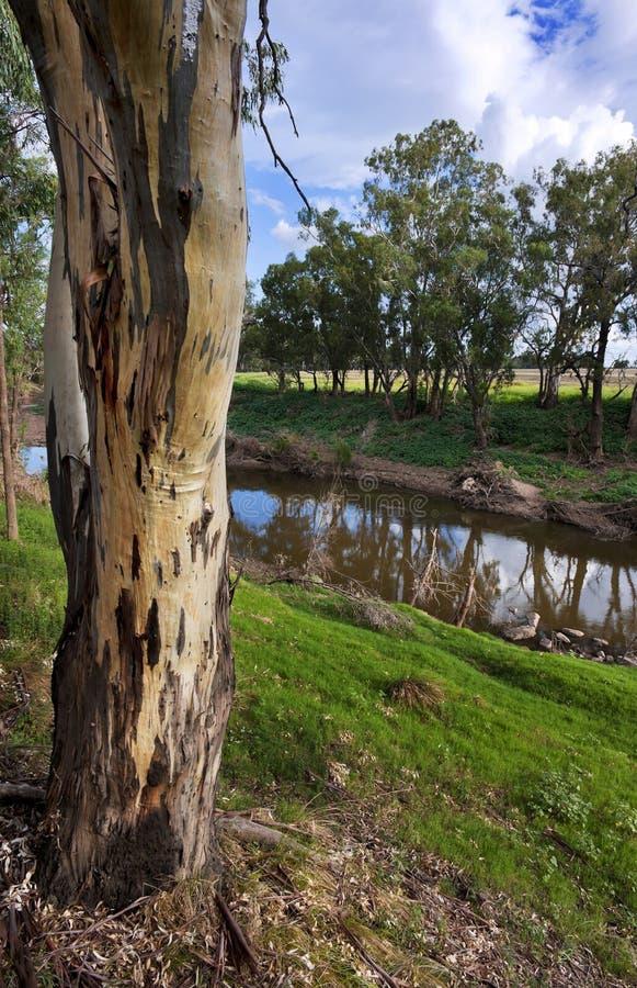 Landelijke Plattelandsrivier stock fotografie