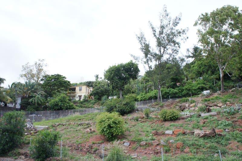 Landelijke regeling in het achterland van het Eiland Rodrigues stock foto's