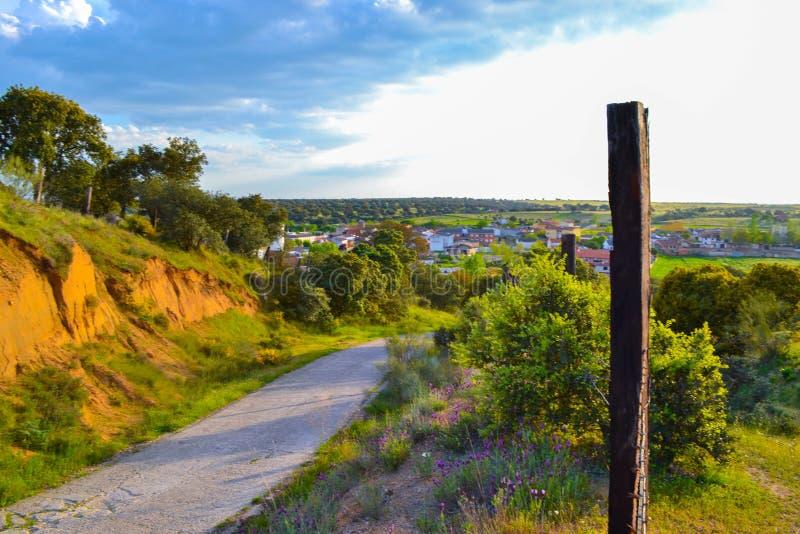 Landelijke weg aan een klein dorp tussen bomen in een zonnige dag royalty-vrije stock afbeeldingen