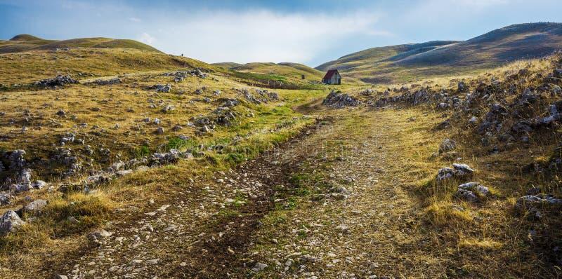 Landelijke weg in bergen stock foto