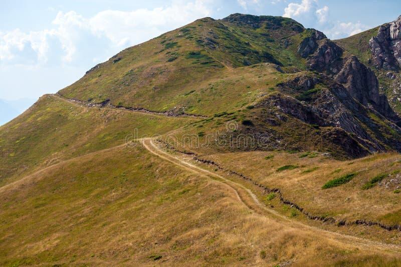 Landelijke weg in bergen stock afbeelding