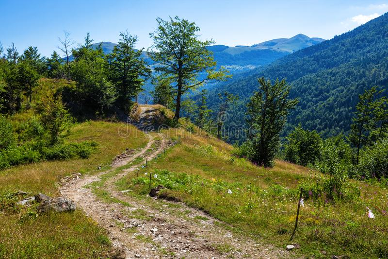 Landelijke weg in bergen stock foto's