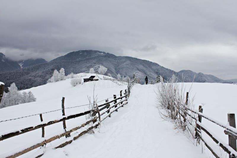 Landelijke weg in de bergen tijdens de winter stock afbeeldingen