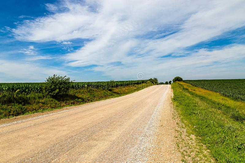 Landelijke weg door graan of maïslandbouwbedrijf royalty-vrije stock afbeeldingen