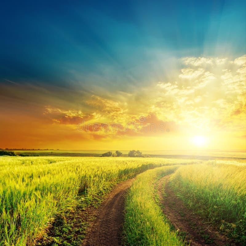 Landelijke weg in groene gebieden en oranje zonsondergang royalty-vrije stock afbeelding