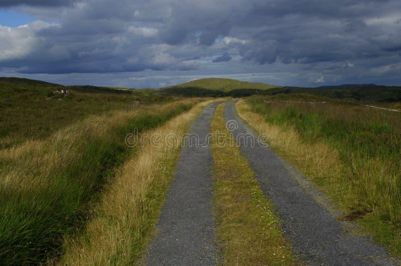 Landelijke Weg in het Westen Cork Ireland royalty-vrije stock foto