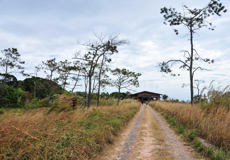 Landelijke weg in Kampot, Kambodja royalty-vrije stock foto's